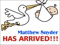 New Baby 02- Baby's Arrival Yard Sign