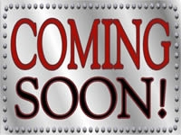 Business-07 Coming Soon Metallic Yard Sign